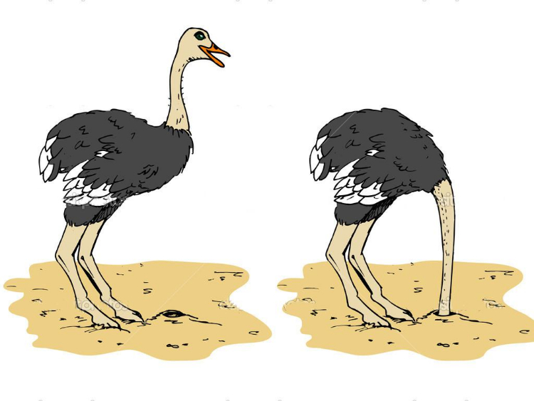 Cartoon-ostrich-with-head-below-sand.jpg
